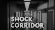 19 Shock Corridor